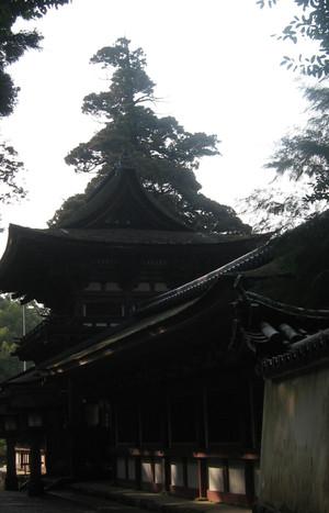 Img_2884